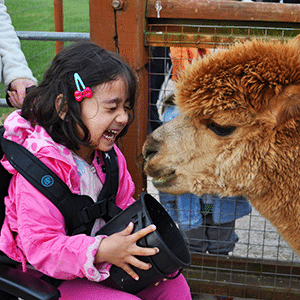 Childrens Adventure Farm